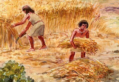 Los primeros agricultores