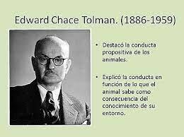 TEORÍA DE LA PERSONALIDAD DE EDWARD C. TOLMAN