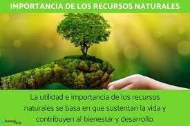 Estratègia mundial per la conservació de la natura.