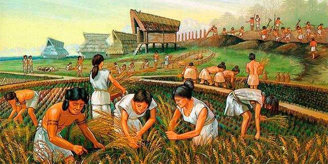 Surgimiento de la agricultura y la ganadería