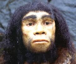 Homo heidelbergensis.