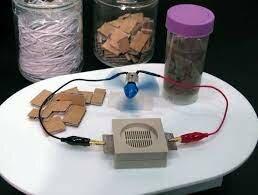 Bio Battery