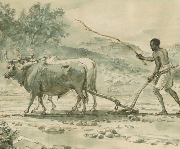 el arado
