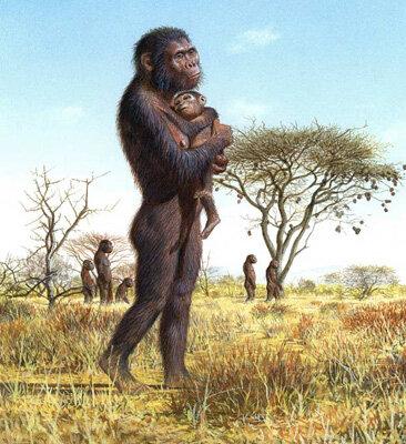 Esimesed kahel jalal kõndivad inimahvid Australopiteekused