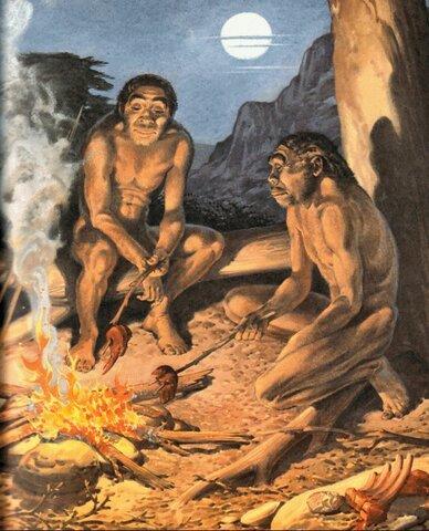 Esimene tuld kasutav inimene ehk Homo erectus