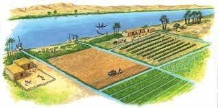 Riego agrícola.