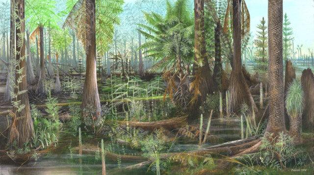 Esimesed metsad