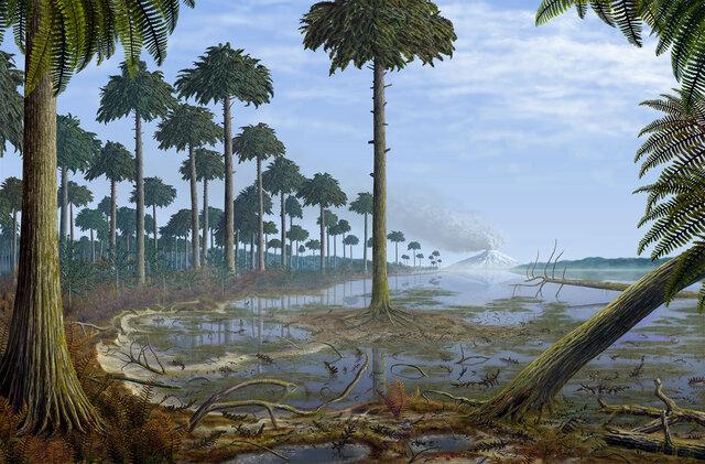 Esimeste metsade teke Archaeopterise puuliigist
