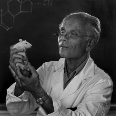 Selye János  1907 - 1982 timeline