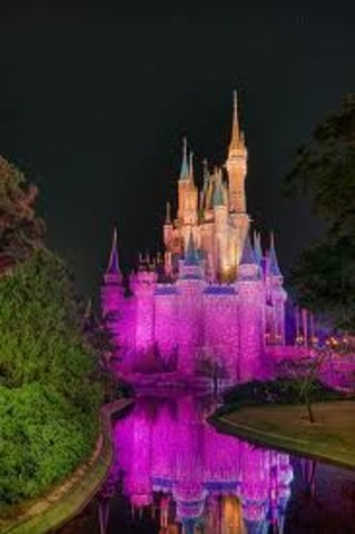 Magic Kingdom Opens