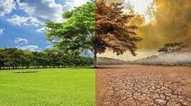El cambio climático. timeline
