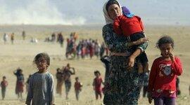 "A refugee's ""dreamland"" timeline"