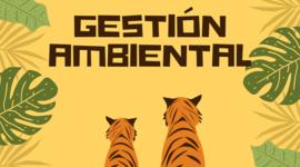 Gestión Ambiental  timeline