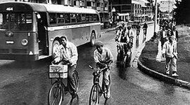 The Montgomery Bus Boycott timeline