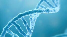 Linea del tiempo ADN (Equipo 5) timeline