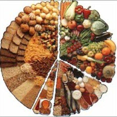 Alimentación del Ser Humano  timeline