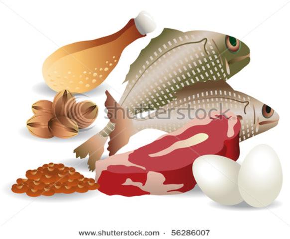 Fish Preservation