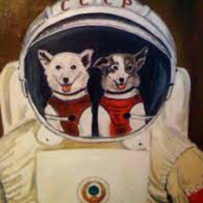 Собаки в космосе timeline