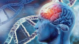 Línea de tiempo: Desarrollo de la neuropsicología timeline
