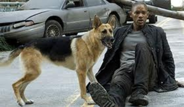 Will Smith stars in I Am Legend practically by himself, he holds the screen alone for over an hour almost.