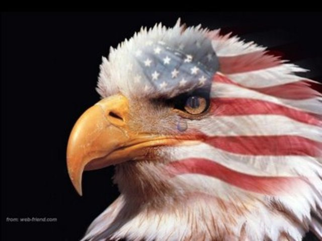 United States Declares Neutrality