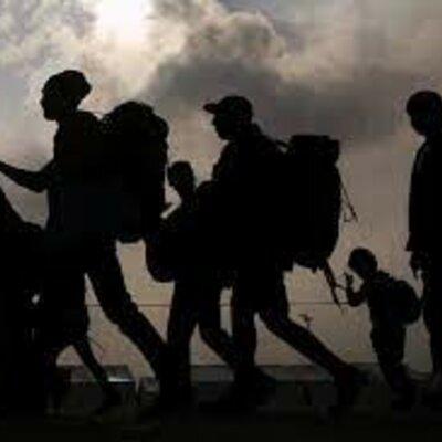 causas de las migraciones  timeline