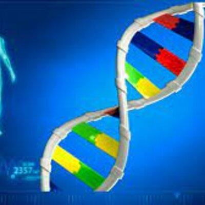 Linea de tiempo genética timeline