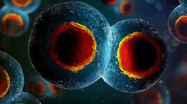 Evolución de las células  timeline