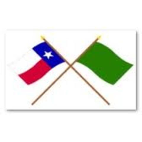 Green Flag (Gutierrez-Magee Exp.)