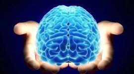 Actividad 1 - La Neuropsicología en el tiempo timeline