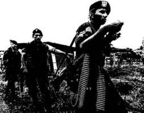 CONSOLIDACION DE LAS FARC