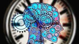 Neuropsicología en el Tiempo timeline