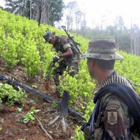 Junta de Coordinación y el gobierno en un territorio neutral