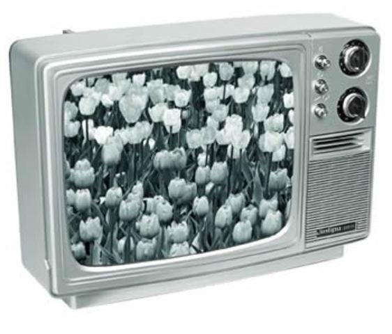 NTSC B&W TV