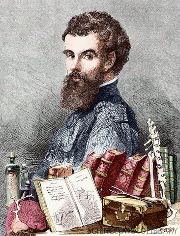Andreas Vesalius publishes the first accurate analysis of human anatomy