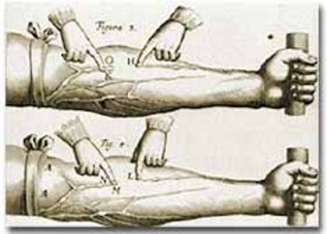William Harvey describes how blood travels through the human body