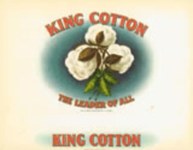 """King Cotton"""