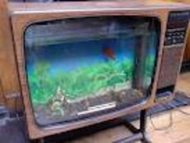 2º televisión.