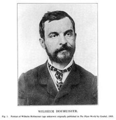 Wilhem Hofmeister