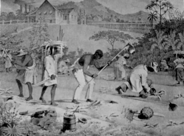 Slave Roles in 1850