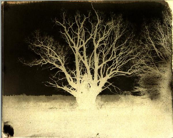 The Calotype Process is patented