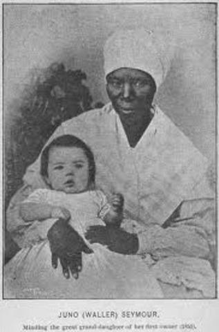 Pregnant Slave Population