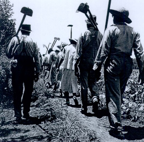 Slave labor Force