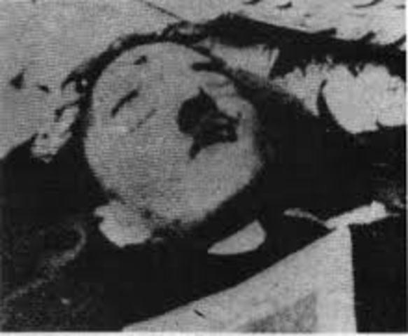 Hitler kills himself