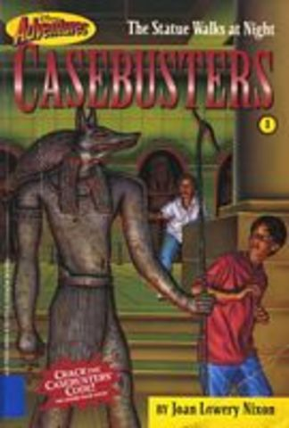 Casebusters series of 12