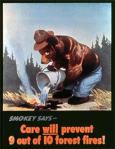 The Creation of Smokey Bear