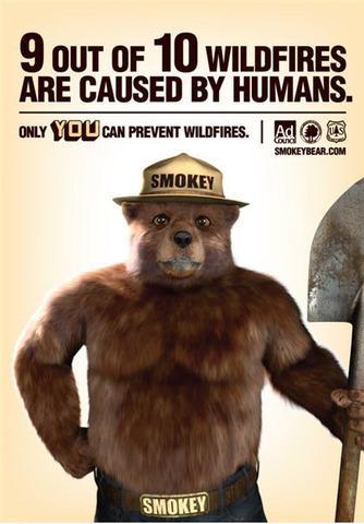 Revamped Smokey Bear