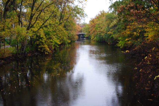 Red Cedar River Picture 5