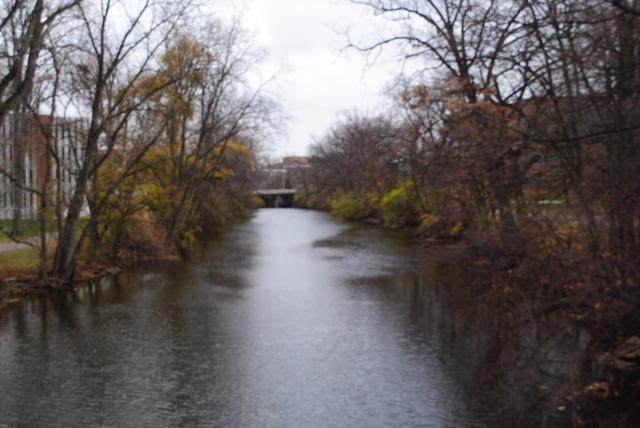 Red Cedar River Picutre 8