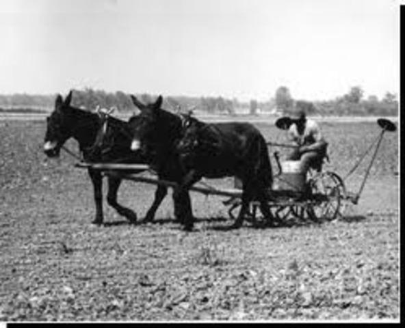 Tenent Farming Begins